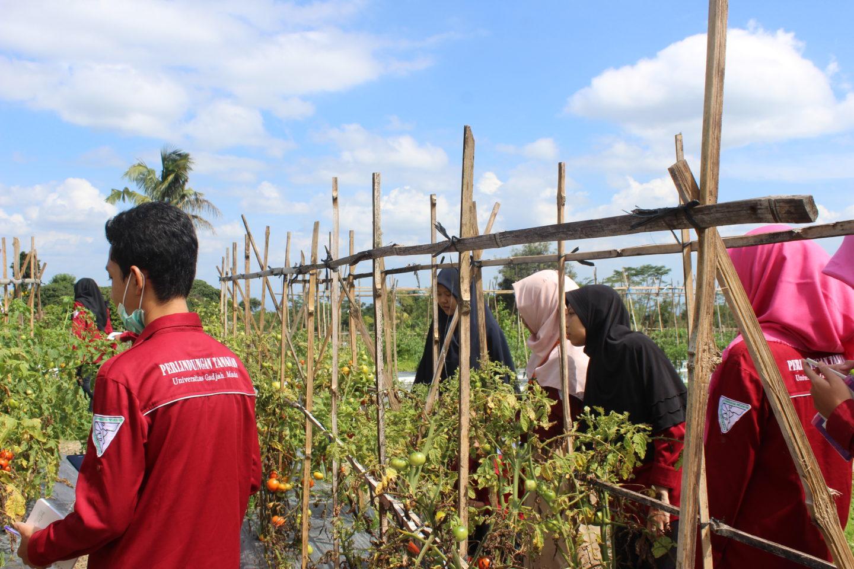 Plant Protection Training